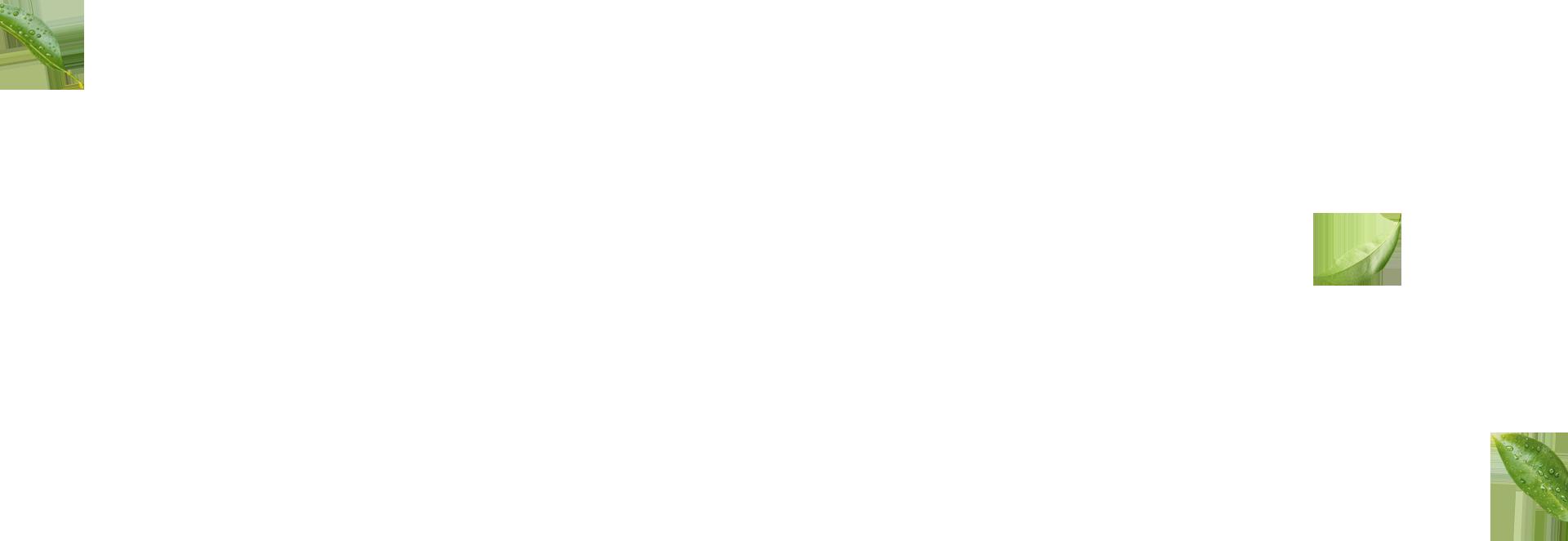 ltx-parallax-layer
